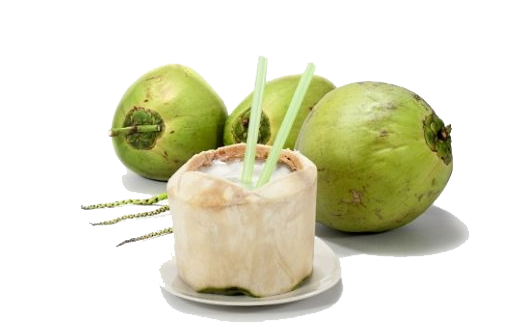 air kelapa1